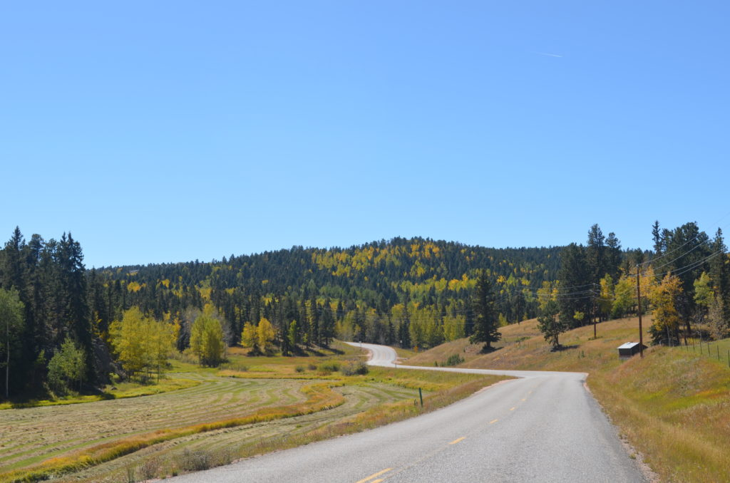 The drive to the cabin is gorgeous!